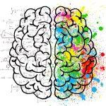 英語は右脳or左脳?どちらを使う?
